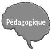 Pédagogique cerveau